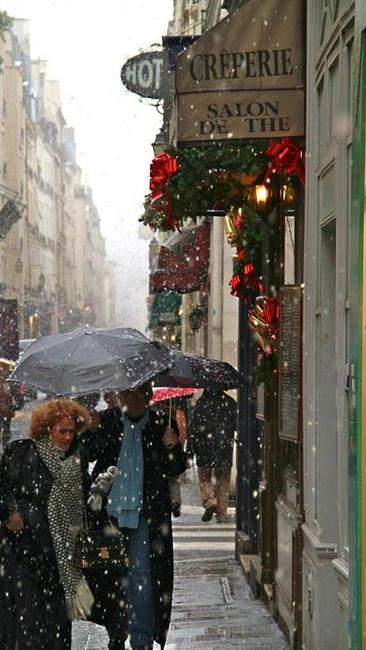 lat-photos-paris-in-winters-grip-121710-005